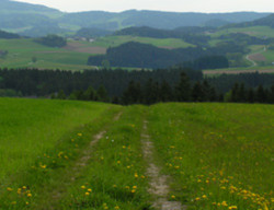 Saubergerweg (5,5 km)