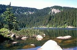 Natura Trail Böhmerwald-Sumava (12,5 km)