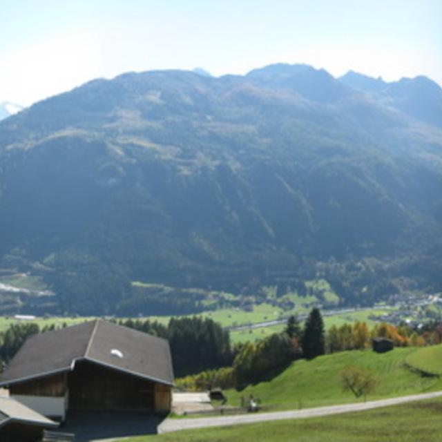 Plattwald