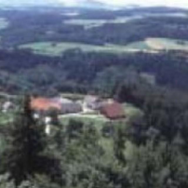 LSG Roadlberg