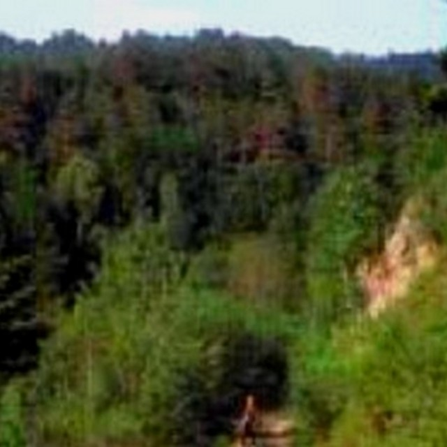 Naturschutzgebiet Tal des kleinen Kößlbaches