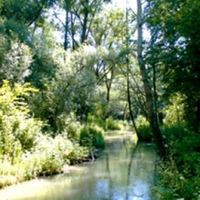 Mühlenweg - Der Aulehrpfad