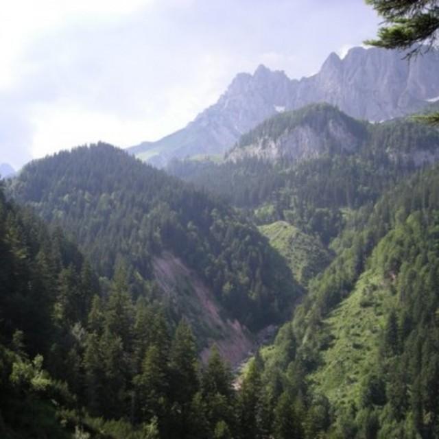 natura trail kaisergebirge. Black Bedroom Furniture Sets. Home Design Ideas