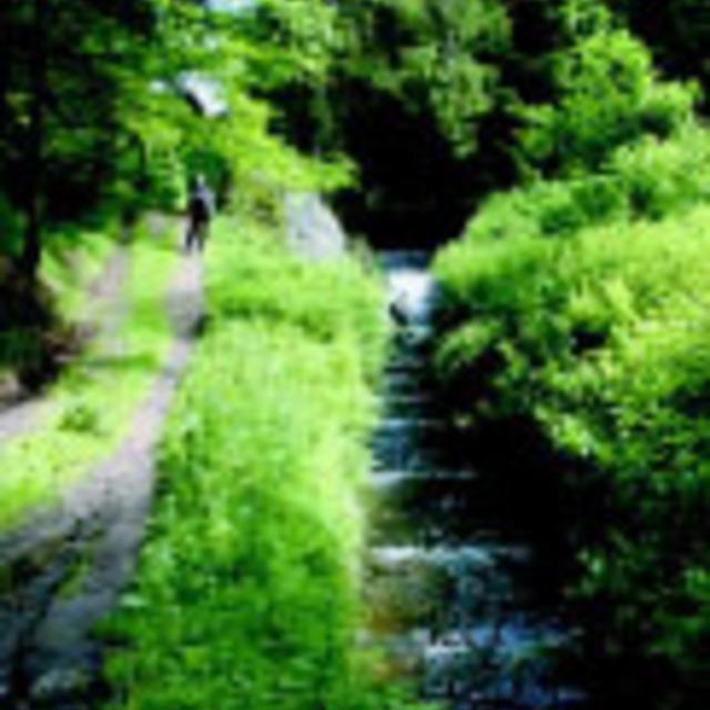 Schwemmkanal Steilstufe