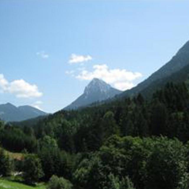 Achenwald-Blaubergalm