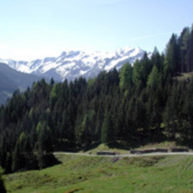 Brucker Berg - Seeblickrunde