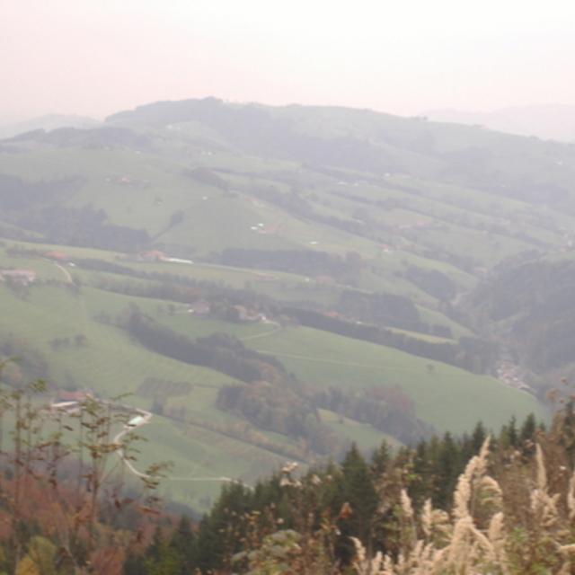 Damberg-Schwarzberg