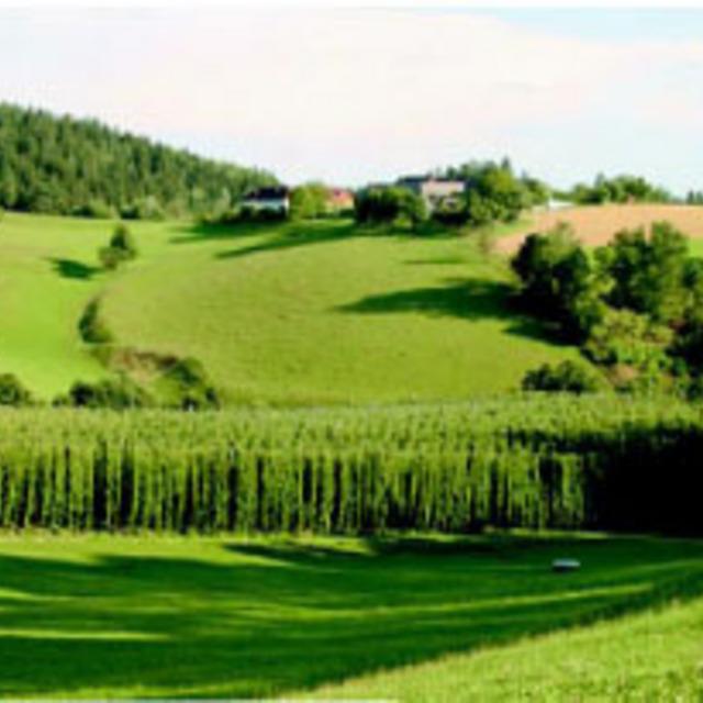 Hopfenweg (kurze Route)