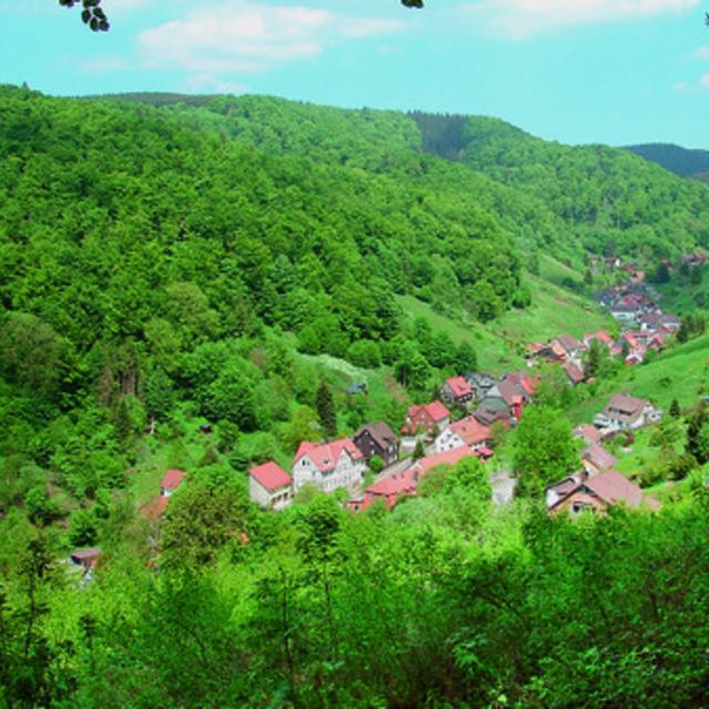 Harzer-Hexen-Steig - Etappe 1