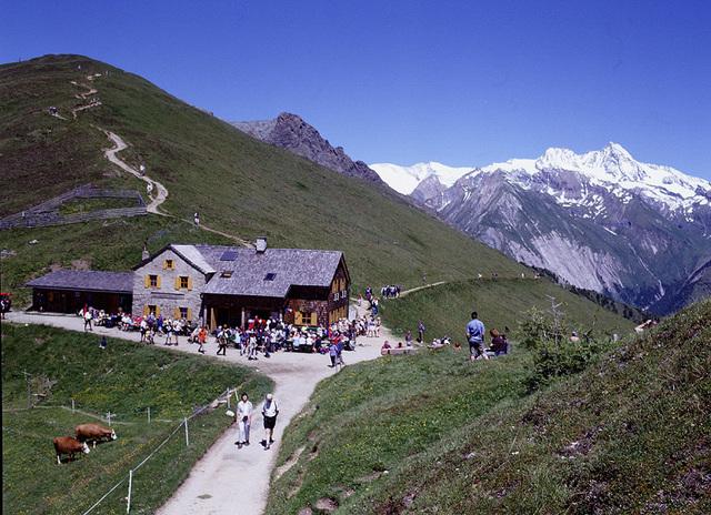 Kals-Matreier-Törlhaus 2.207 m