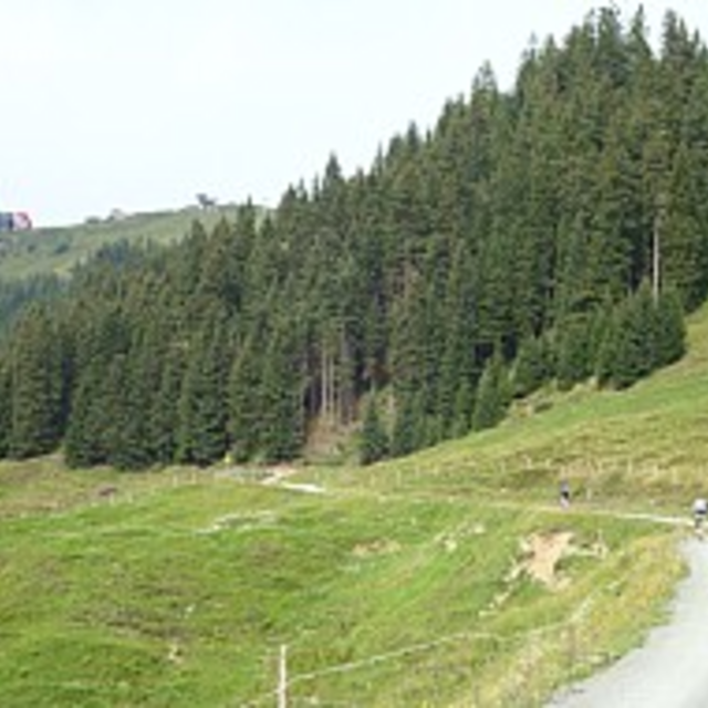 Route 218: Saukaser - Pengelstein