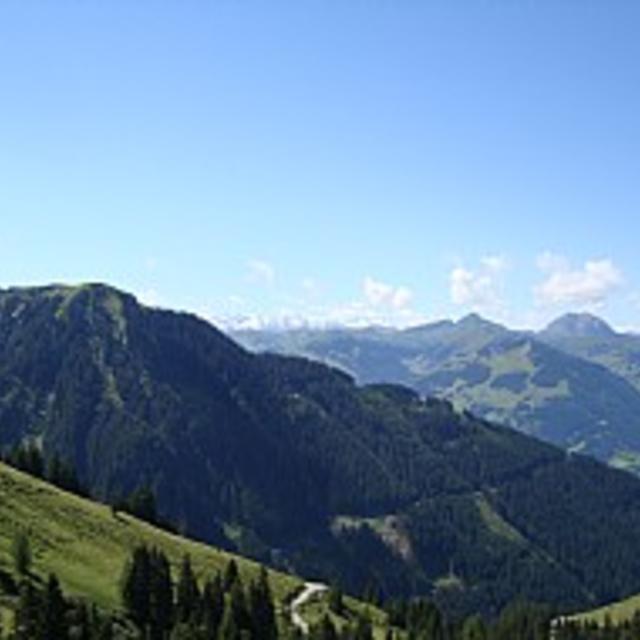 Route 242: Aurach - Hochwildalmhütte