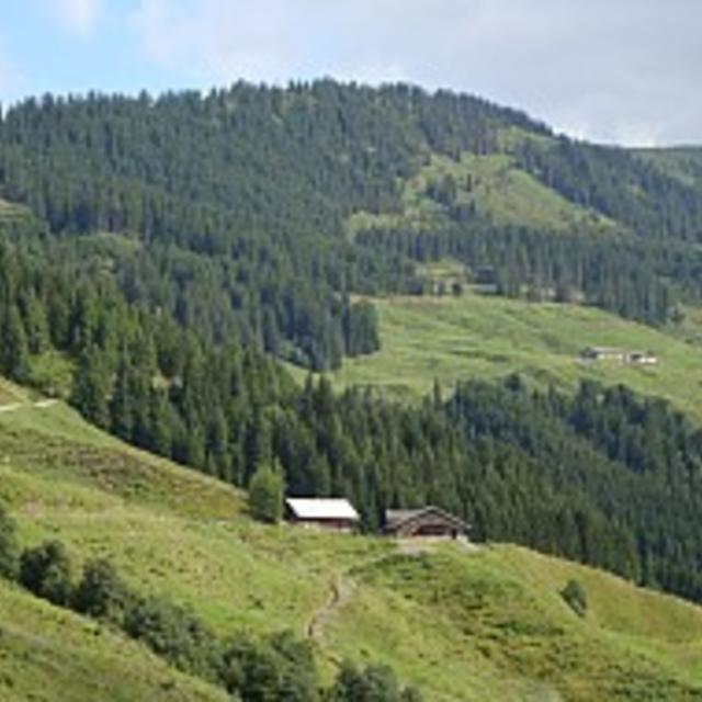 Route 228: Toif - Ölbankalpe - Sonnblick