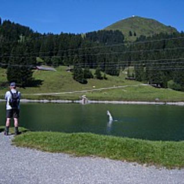 Route 265: Hochbrixen - Hochsöll
