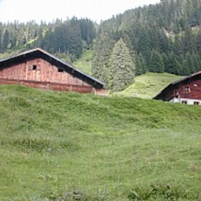 Route 205: Aschauer Höhenweg