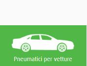 vetture pneumatici invernali