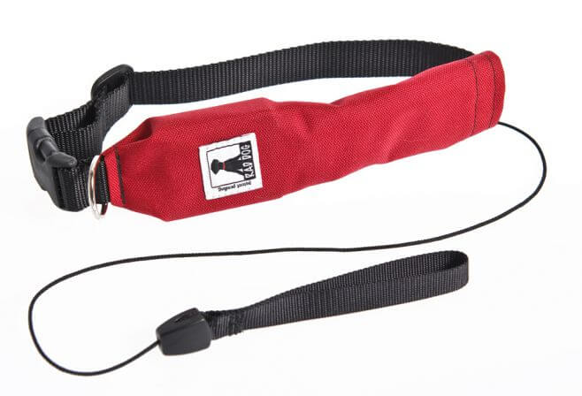 Rad Dog Release N Run Dog Leash