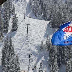 Bluebird Powder at Alta