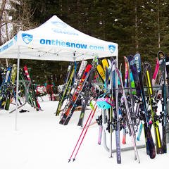 Dozens of pairs of skis awaiting you among the trees... ski testing does not suck.