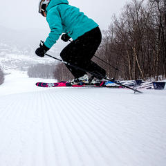 Sugarbush Glades & Groomers Galore