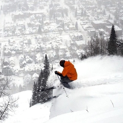 Telluride, CO Powder