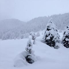 Tief eingeschneit: Livigno am 18. Januar 2015