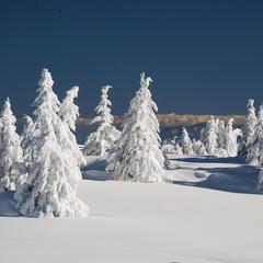 Skigebiet Kopaonik - ©Christoph Schrahe