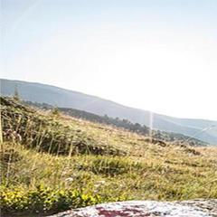 Wandertipp der Woche: Nationalpark-Panoramaweg - ©graubuenden.ch
