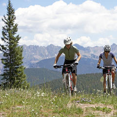 Mountain Biking on Vail MountainMountain biking, summer, Vail, Colorado. USA