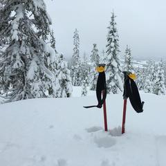 Varingskollen - Lørdagen i Varingskollen, det har kommet enda mer snø siden dette bilde ble tatt. Kom dere i bakken!