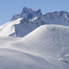 Skifahren im Tiefschnee vn St. Anton - ©TVB St. Anton am Arlberg / Josef Mallaun