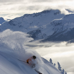 Whistler Blackcomb powder (Paul Morrison)