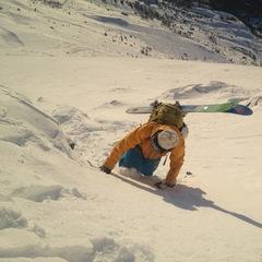Skogshorn 5 desember 2012