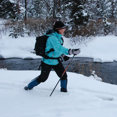 A skier tours Specimen Creek in Yellowstone. Photo by Becky Lomax.