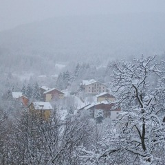 Fresh snow in Tonezza, Italy. Jan. 15, 2013