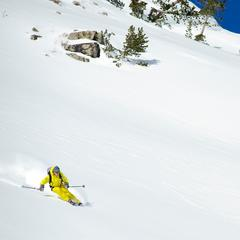 Wide open terrain with Sun Valley Heli-Ski Guides.