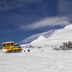 Timberline Oregon