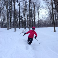 Plenty of soft snow can be found hiding in the trees at Stratton. Photo Courtesy of Stratton Mountain Resort.