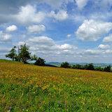Wandern auf dem Kammweg - ©Sabine Schulze / TV Erzgebirge