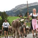 Alpabtrieb im Kleinwalsertal - ©Kleinwalsertal Tourismus | Frank Drechsel