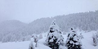 Snehové správy: Ozajstná zima so snehom prichádza aj k nám - a vydrží!