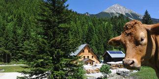 Bosruckhütte - ©Oberösterreich Tourismus