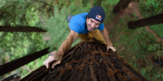 Chris Sharma: Treeclimbing