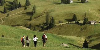 Seiser Alm: Wandern über die größte Hochalm Europas mit spektakulärem 360-Grad-Bergpanorama - ©Marketing/Alessandro Trovati
