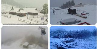 Pierwszy śnieg w Polsce i na Słowacji - galeria zdjęć - ©Webcamera