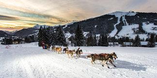 La Grande Odyssée Savoie Mont Blanc - ©Office de Tourisme Les Gets