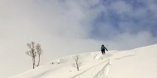 Bildeserie: Over en meter nysnø på Vestlandet - ©Arild Gravdal