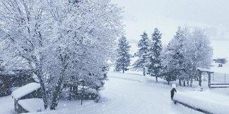 Dove sta nevicando? Webcam in diretta - ©Livigno Facebook