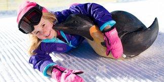 Vy jste rozhodli: Nejlepší česká lyžařská střediska pro rodiny ©Big Bear Mountain Resort
