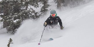 Photo Gallery: Colorado, Utah Score Holiday Pow ©Alta Ski Area